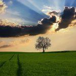 OPORTUNIDADE: Supervisor de Produção(M/F) – Agricultura –  Urgente (m/f)