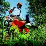 OFERTA DE EMPREGO: Jardineiro (m/f) – Riba d'Ave