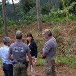 ALERTA: Limpar florestas vai dar descontos nos impostos