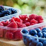EMPREGO: Colaboradores para apanha de Frutos Vermelhos (M/F)