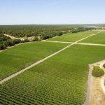 OPORTUNIDADE : Agronomia (estagiário)(M/F) – Herdade da Comporta