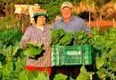 O que pensam os portugueses da PAC e dos agricultores?