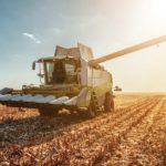 É na agricultura que mais nascem novas empresas