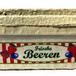 Distribuidor holandês de fruta e legumes procura novos conceitos de embalagens ecológicas