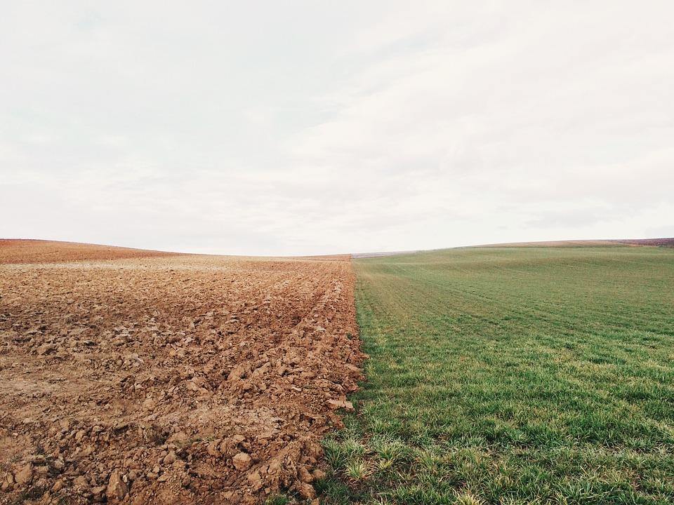 tecnologia agrícola e alimentar