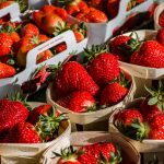 OFERTA DE EMPREGO: Operadores/as de Inserção de Registos de Colheita de fruta (m/f)