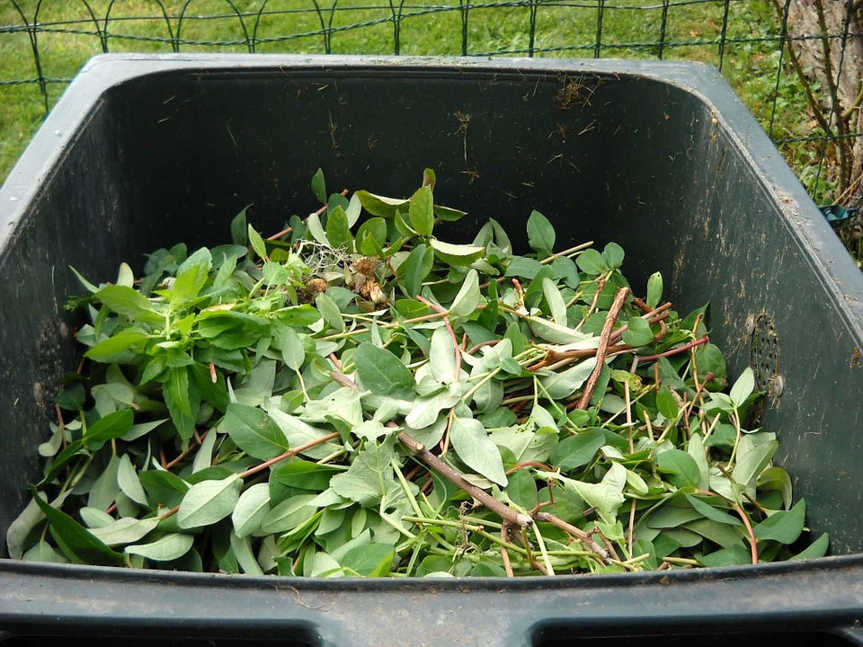 compostagem lipor