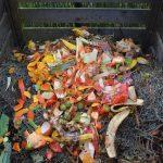 Será que sabia isto sobre a compostagem? Confira