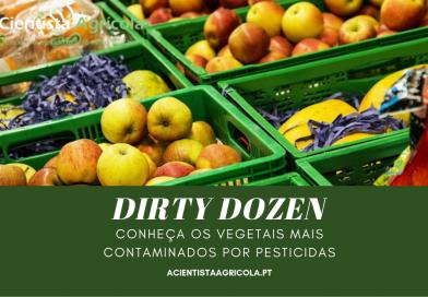 Dirty Dozen 2019: conheça as frutas e legumes com mais pesticidas