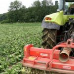 Prazo para candidaturas dos agricultores ao Pedido Único alargado até 6 de maio