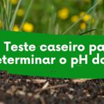 VÍDEO DA SEMANA: Aprenda a fazer um teste caseiro para determinar o pH do seu solo