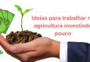 Trabalhar na agricultura: 8 ideias de actividades profissionais para quem não quer investir muito