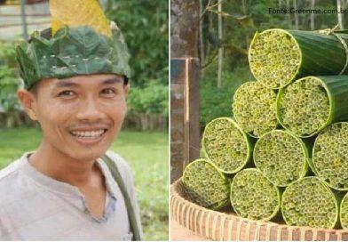 Vietnamita descobre canas naturais, mastigáveis e BIODEGRADÁVEIS!