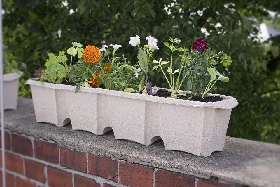 como fazer uma horta urbana