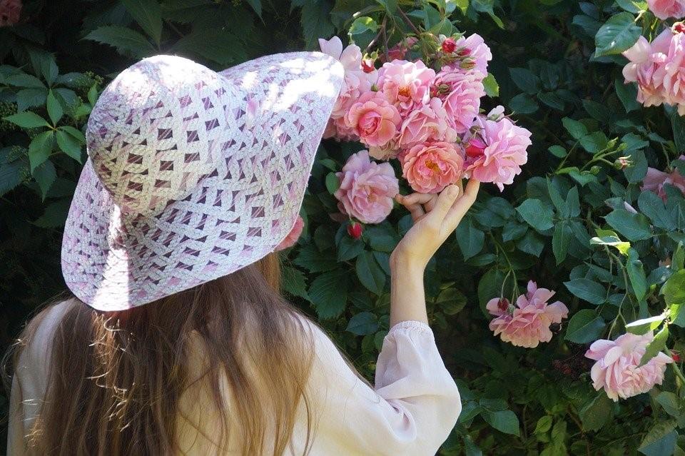 Menina, Chapéu, Rosa, Roseira, Young, Macio, Romance