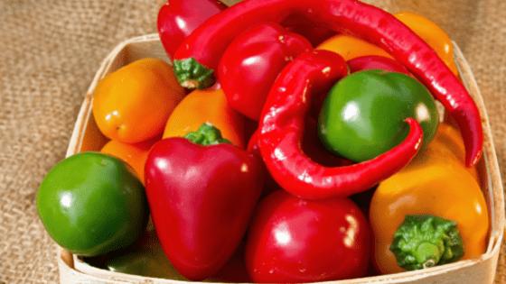 como cultivar pimentos