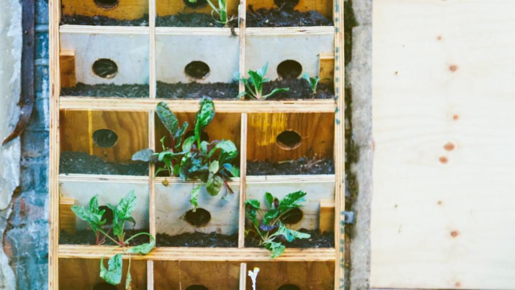 vasos para hortas verticais